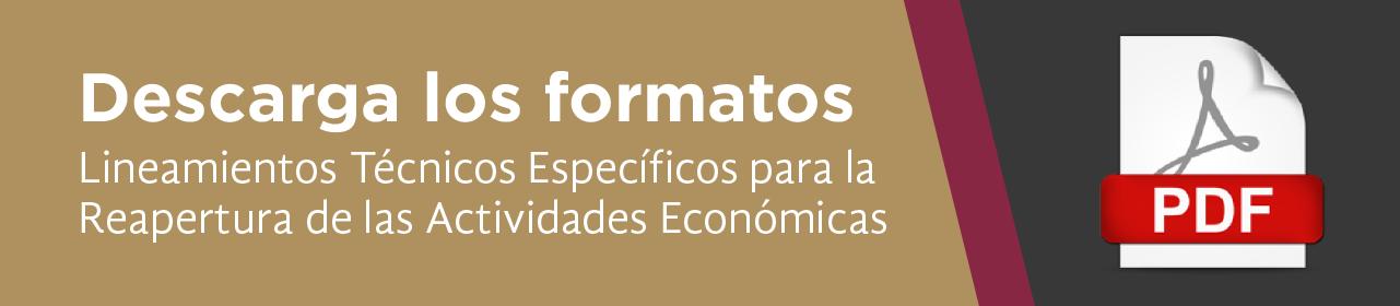 Lineamientos técnicos específicos para la reapertura de las actividades economicas