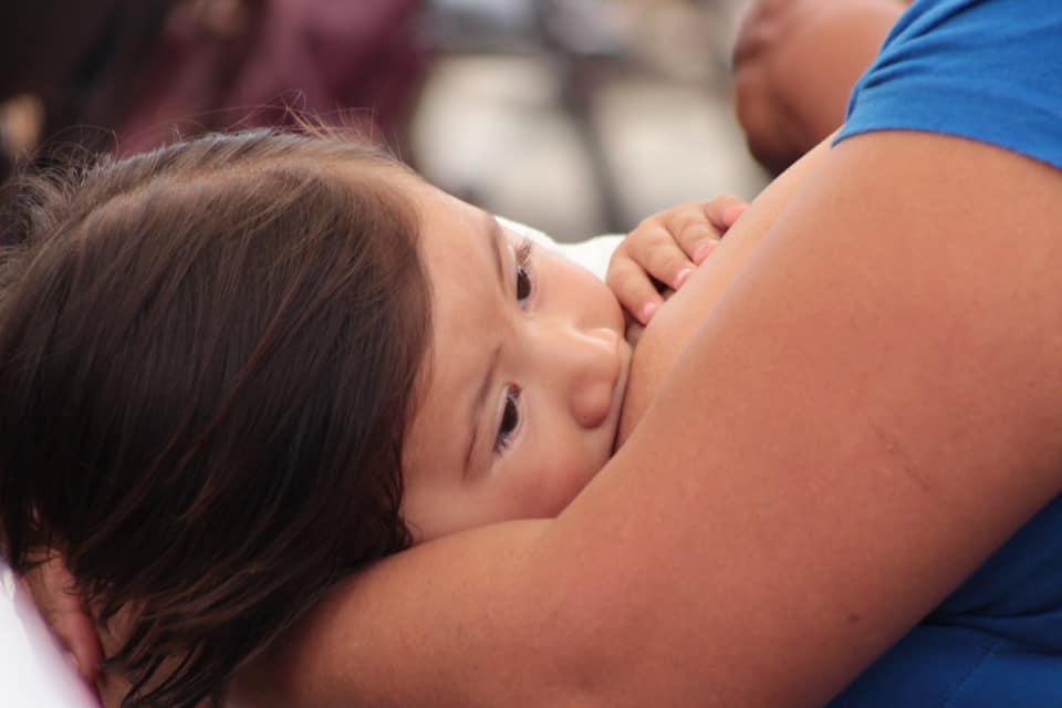 Chiapas se suma a la Semana Mundial de la Lactancia Materna.jpg
